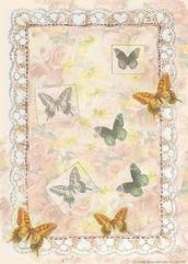 Butterflies on lacey background