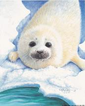 Harp Seal Pup designs