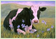 Holstein Cow in flowers