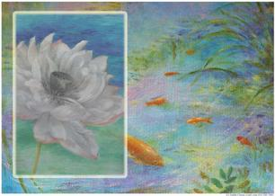 waterlily and goldfish pond koi