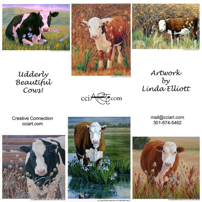 Cows by Linda Elliott